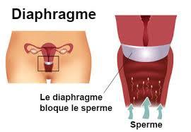 action diaphragme cape cervicale