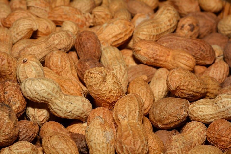arachide et cholesterol