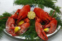 Fruits de mer et cholestérol