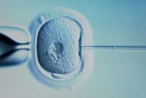 comprendre fecondation in vitro