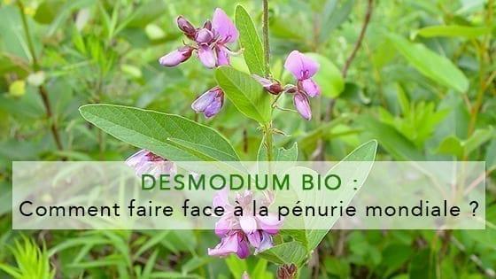 desmodium-bio