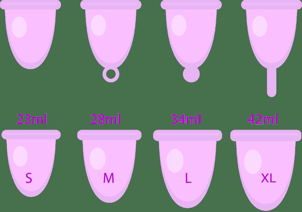 les-différentes-cups