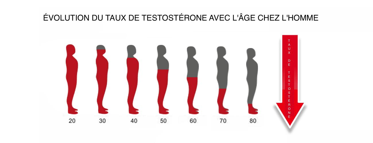production testosterone homme avec age