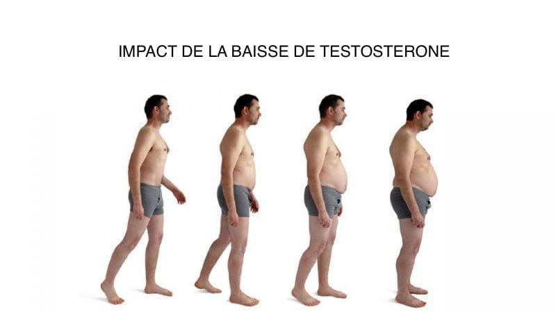 testosterone basse fait grossir