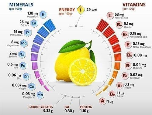 infographie-composition-citron
