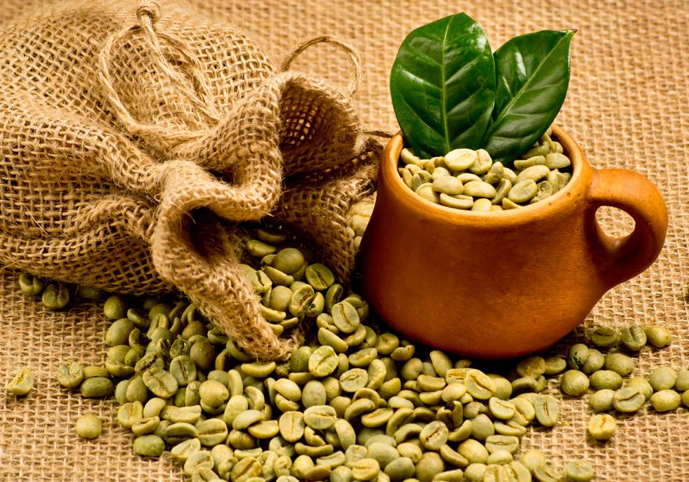 grains cafe vert