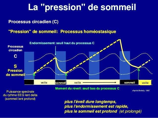 processus homéostasique
